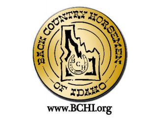 bchi.org