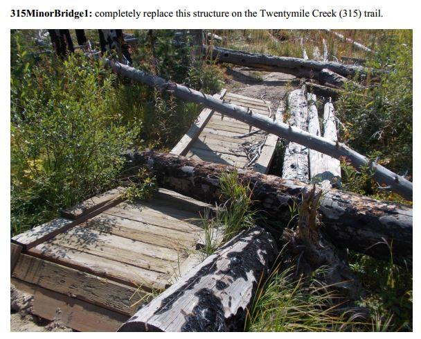 pnf-bridge